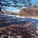 Oberes Vessertal im Biosphärenreservat Vessertal - Thüringer Wald . Thüringen (Foto: Andreas Kuhrt)
